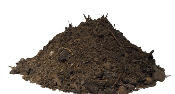 mound of compost