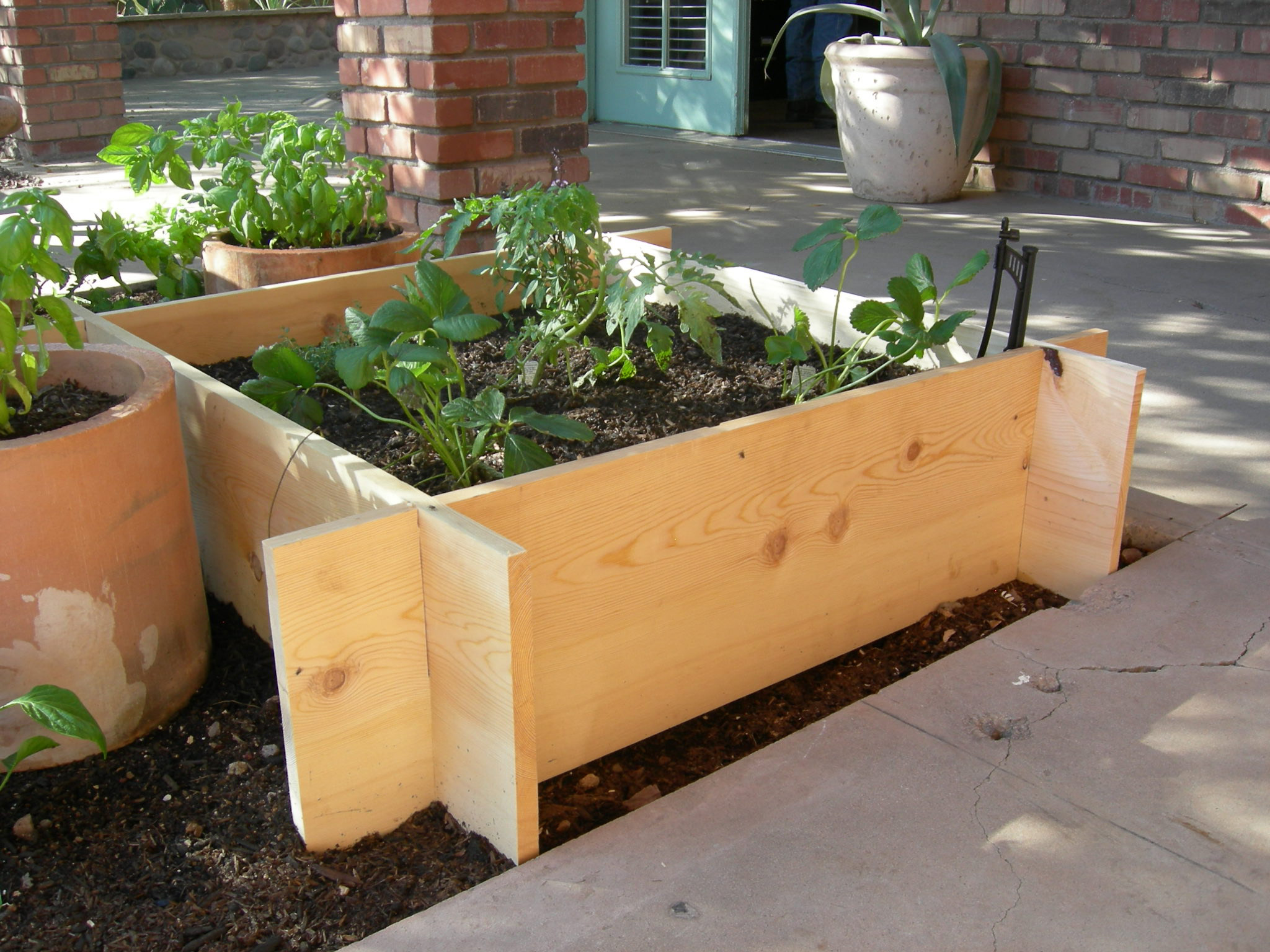 30 x 30 Raised Garden Box